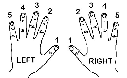 Numbering our finger - Piano Basics - Jason Yang Pianist